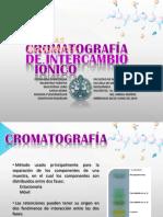 Cromatografia de intercambio ionico.pdf