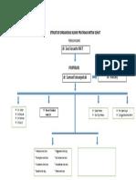 Struktur Organisasi Klinik Pratama Mitra Sehat
