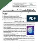 LA DIVISION CELULAR - copia.pdf
