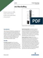 deltav-electronic-marshalling-en-56832.pdf
