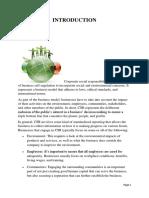 CSR_org - Copy.docx