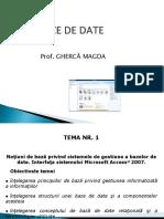 Baze de Date Access