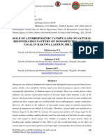 Role of Anthropogenic Canopy Gaps on Natural Regeneration Pattern of Monospecific Ceriops Tagal in Rakawa Lagoon, Sri Lanka