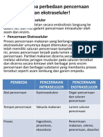 296030674-LKM-Sistem-Alimentasi.pptx