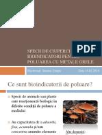 Specii de ciuperci ca bioindicatori pentru poluarea cu metale grele. Timpu Simona Madd.pptx