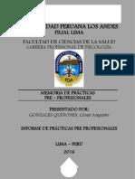 MEMORIA DE PRÁCTICAS PRE-PROFESIONALES
