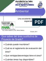 IngenieAmbiental.pdf