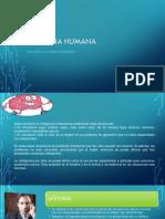 La Inteligencia Humana -Filosofia