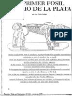El Primer Fosil Del Rio de La Plata