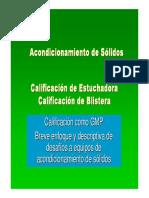 266671046-Calificacion-Estuchadora-Blistera-FINAL.pdf