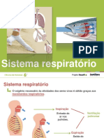 sistema_respiratorio .pdf