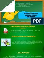Sesion 01. Polinomios y conjuntos (Teoría y práctica).ppsx