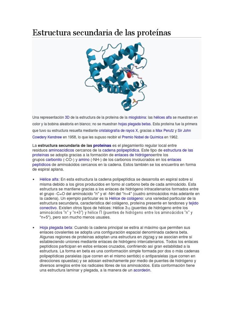 Estructura Secundaria De Las Proteínas Alfa Hélice Proteínas