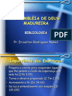 bibliologia_prerivelton.pdf