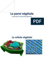 Cours 2-La Paroi Pectocellulosique