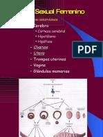 ciclosexualfemenino-090930164404-phpapp01