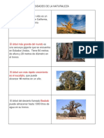 CURIOSIDADES DE LA NATURALEZA.docx