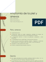 Anatomadelapielyanexos 141113234201 Conversion Gate01
