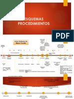 Esquemas de Procedimeintos (1)
