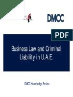 Business Law Criminal Liability