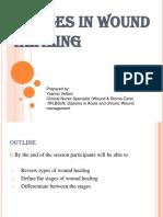 Factors Influencing Wound Healing (2)