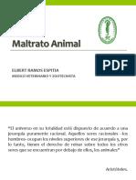 Maltrato en Animales Domsticos V