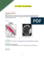 1.1.Epidural or extradural hematoma.docx