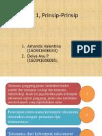 Prinsip ICN