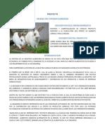 Proyecto Granja de Conejos Kary 2016