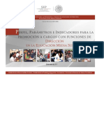 Ppi Promocion Direccion Ems 2017