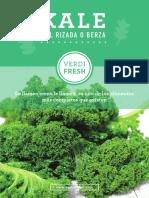 kale_receta.pdf