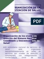 Organización de La Atención de Salud 2017 (1)