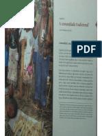 BRANDÃO_ A comunidade tradicional.pdf