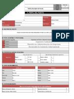 Formato Perfil y Descriptor Xlsx