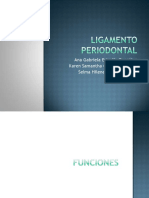Ligamentoperiodontal 110906205540 Phpapp01 (1)