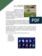 Analisis de Las Comunidades Microbianas Basados en Tecnicas de Cultivo
