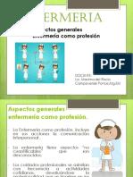 Aspectos Generales Enfermera Como Profession