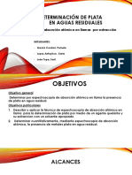eaa de la plata.pptx