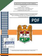 CREN SA CT Orientaciones Académicas Para La Elaboración Del Informe de Práctia Profesional