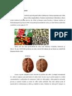 Metode şi tehnici de investigare generale sau specifice a autenticităţii cafelei