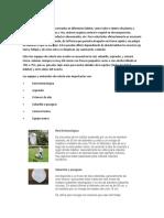 PRACTICA 1 ENTOMOLOGIA MATERIALES DE COLECTA.docx