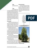 10_Manuten__o_de__rvores.pdf