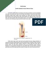 Patofisiologi periodontitis apikalis