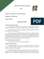 Principios de la calidad.docx