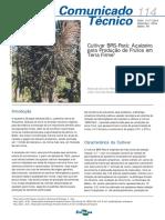 Cultivar BRS Pará - Açaí