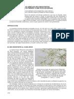 Árboles-más-resistentes.pdf