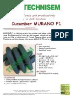 Cucumber Murano F1 (1)