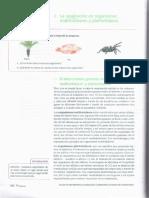 Respiracion unidad 2-1 7.pdf
