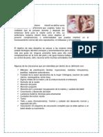 Materno Infantil.docx
