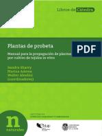 Plantas de Probeta-EDULP